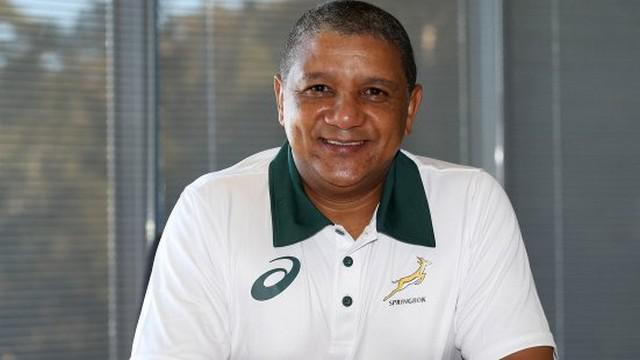 Afrique du Sud - Allister Coetzee nommé à la tête des Springboks pour quatre ans