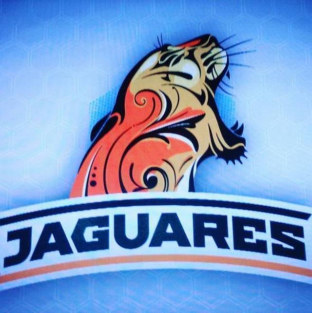 PHOTO. Super Rugby - Argentine : le logo de Los Jaguares dévoilé