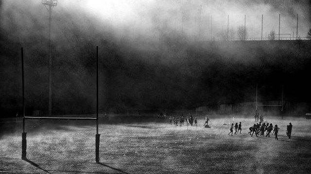 Festival Rugb'images. Le concours photos «Les yeux du Stade» met à l'honneur de superbes clichés