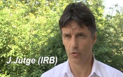 VIDEO. Joël Jutge revient sur les nouvelles règles applicables dès le début du Top 14