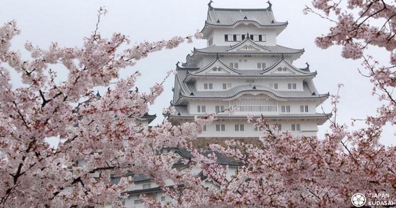 Coupe du monde 2019 - 5 excursions à moins d'une heure de Kyoto