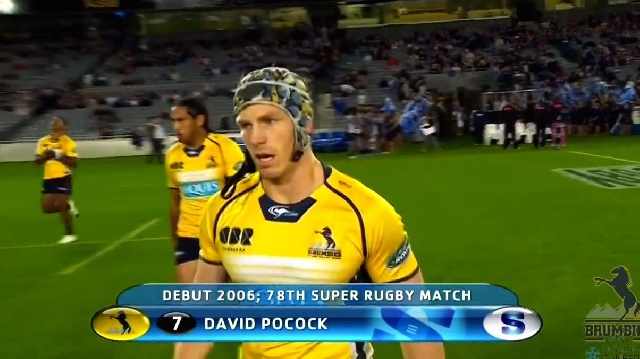VIDEO. Super Rugby. La machine David Pocock impressionne avec ses grattages