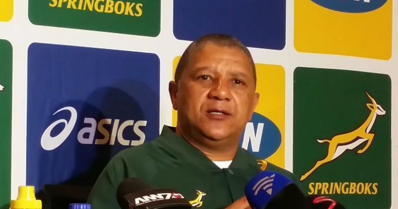 Afrique du Sud - Le sélectionneur des Springboks Allister Coetzee remercié
