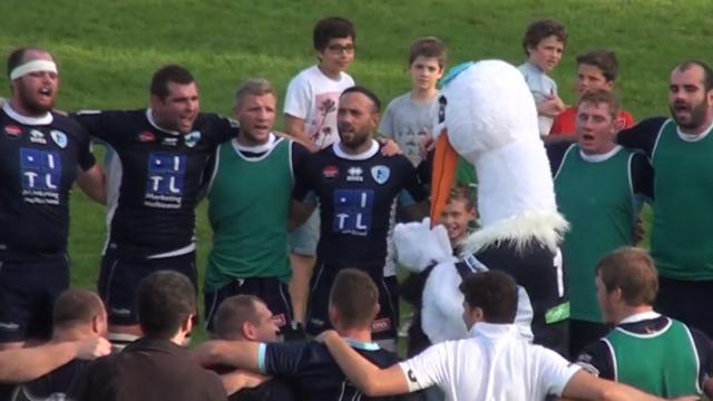 VIDEO. Rugby amateur #27. Le RC Strasbourg déroule, immersion chez les féminines de Sassenage et l'essai à vingt-trois passes des Crabos nantais