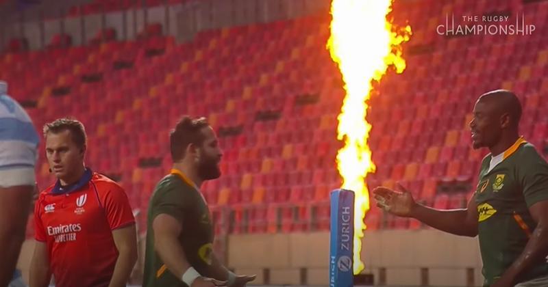 Rugby Championship. Simple, basique : les Springboks dominent facilement les Argentins [VIDÉO]