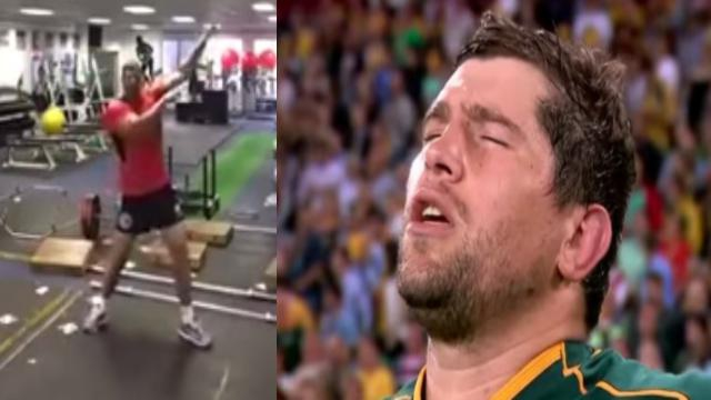 VIDEO. Insolite - Springboks : Willem Alberts s'éclate à la muscu