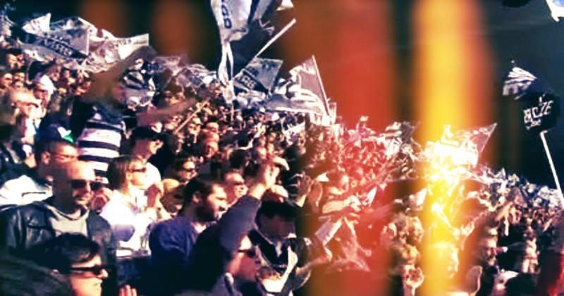 Top 14/Pro D2 - Des dérogations possibles pour augmenter la jauge de supporters