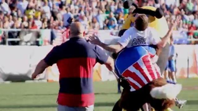 VIDEO. Un aigle met un tampon terrible à un spectateur espagnol