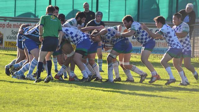 INSOLITE. Un club de rugby sanctionné après avoir emprunté un lama lors d'une 3e mi-temps