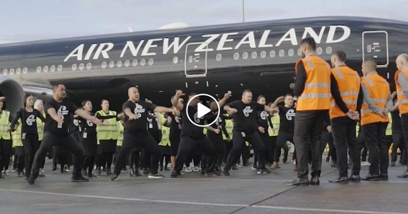 Un haka sur le tarmac de l'aéroport, il n'y a qu'en Nouvelle-Zélande qu'on voit ça [VIDÉO]
