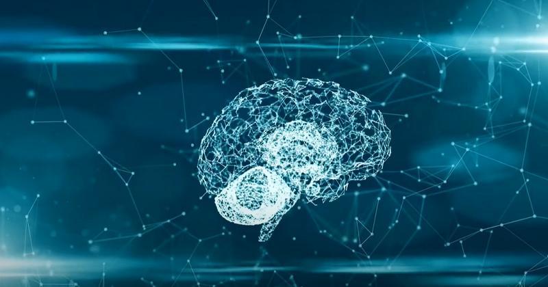 Une étude sur les commotions cérébrales dévoile de nouvelles lésions