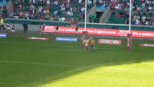 FLASHBACK VIDEO. 2012. Quand une jolie streakeuse s'invite à Twickenham pour le plus grand plaisir des supporters