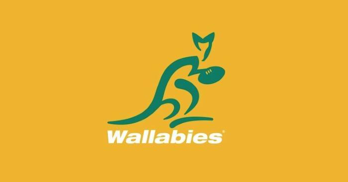 PHOTOS. Les Wallabies rendent hommage à l'héritage aborigène et Torres Strait Islander avec un nouveau maillot somptueux