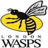 Southwell aux Wasps