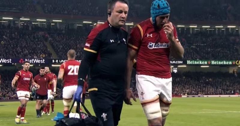 World Rugby - Quelles conséquences après l'évolution de la règle 3 sur le protocole commotion ?