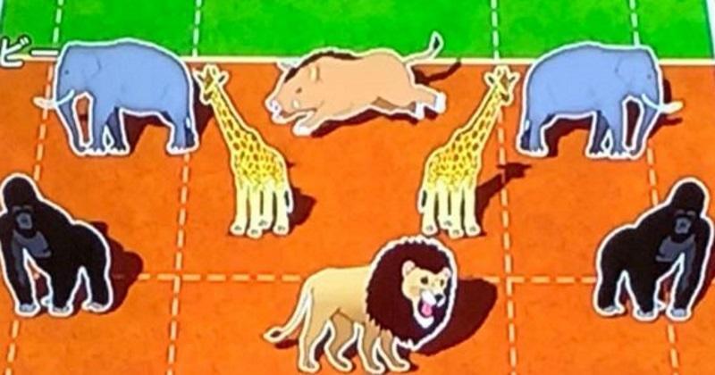 WTF : une télévision japonaise compare les postes du rugby... à des animaux !