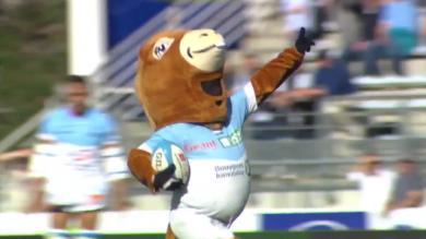 VIDEO. Entre folie et hommage, Pottoka fête ses 15 ans comme mascotte de l'Aviron Bayonnais