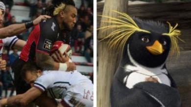 Le Top 15 des tweets rugby qui nous ont marqués cette semaine #10