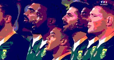 CORONAVIRUS - Pas de matchs à la maison pour les Springboks en 2020