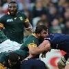 Coupe du monde. Afrique du Sud. Frans Malherbe innocent� apr�s une accusation de morsure