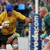 Les Springboks battent les Wallabies dans un match de folie