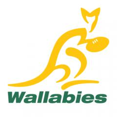 Wallabies - Rugby